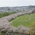 陣ケ丘からの眺め3