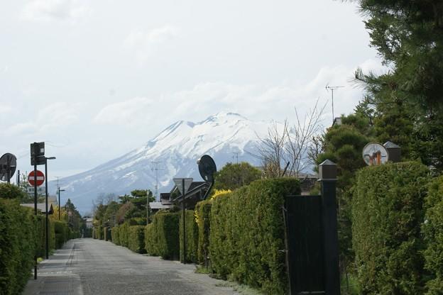 武家屋敷の岩木山