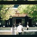 2021.08.05 円覚寺 三門 愛夏