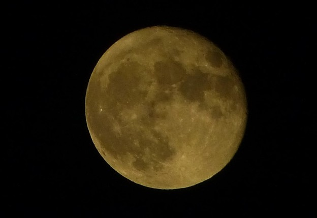 月見 2021-09-22 2