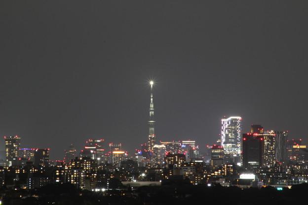 スカイツリー 日本のひなた宮崎県をイメージしたライティング