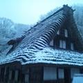 Photos: 雪と藁ぶき屋根