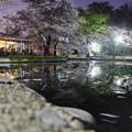 Photos: 流れ去る春色