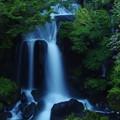 Photos: 深緑の滝
