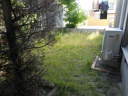 210609第2庭園