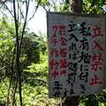 210921-10松茸山