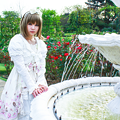 Photos: 薔薇庭園