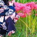 Photos: 牡丹と彼岸花
