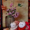 Photos: 雛のつるし飾り~這い子人形