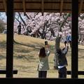 春を撮るふたり