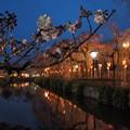 神池に映える灯火