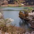 湖畔の彩り