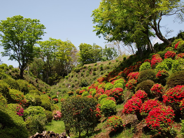 城址を彩る季節の色