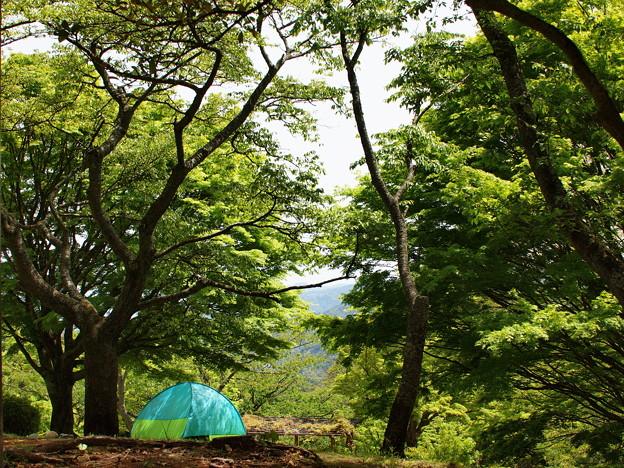 Photos: なんちゃってキャンプ