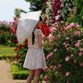 Photos: 薔薇の香りに包まれし
