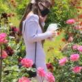 Photos: 春薔薇に囲まれて