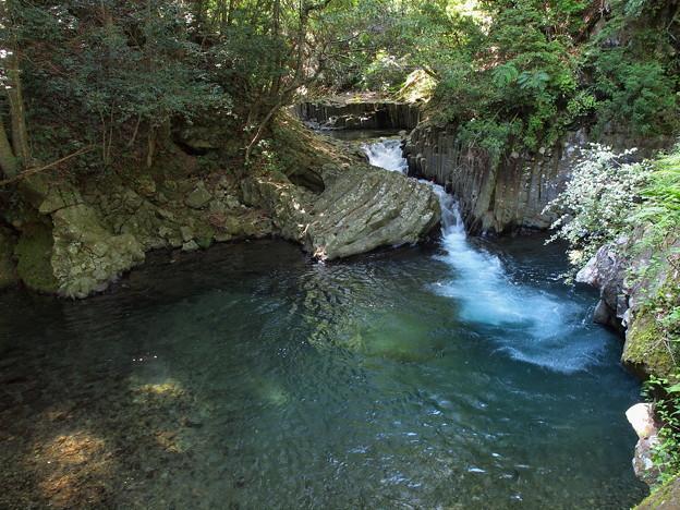 出合滝の木漏れ陽