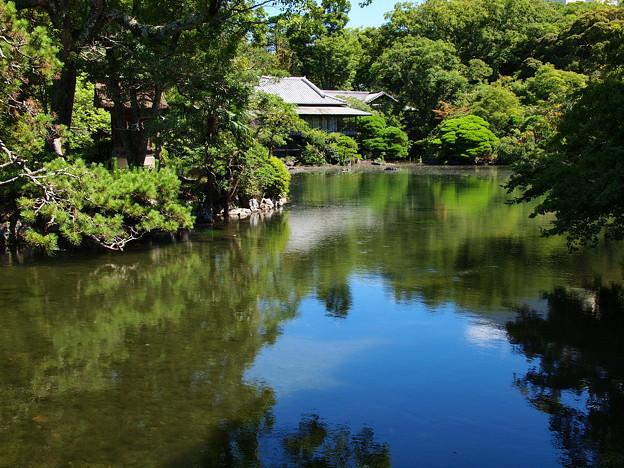 湧水に満ちし小浜池