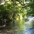 川中のランナー