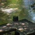 Photos: ぶんぶく湧水