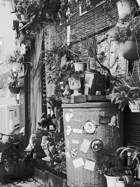 Photos: 裏通りのごった飾り