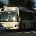 Photos: 【大和観光自動車】 大宮234く5151