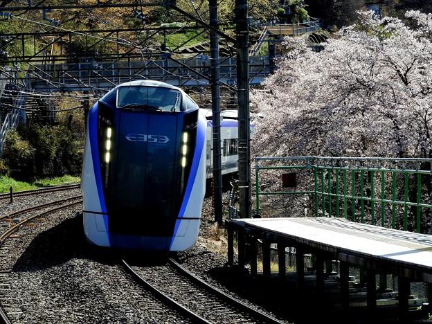 桜とE353系
