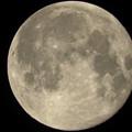 Photos: 4月の満月