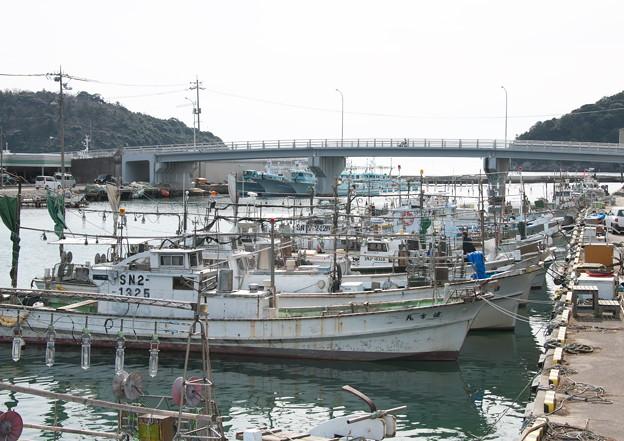 天神橋から河口・港橋方面、イカ釣り船
