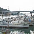 Photos: 天神橋から河口・港橋方面、イカ釣り船
