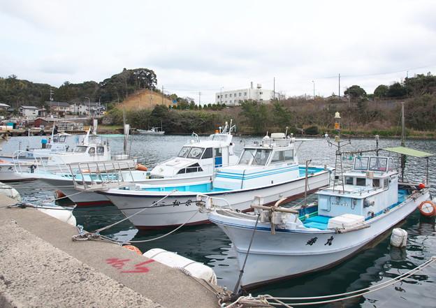 西郷湾、登具湾の風景(3)