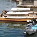 八尾川河口風景(2)かっぱ遊覧船
