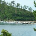 Photos: 隠岐の島町、奥津戸港