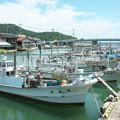 Photos: 港の風景、休日のイカ釣り船(1)