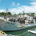 Photos: 港の風景、休日のイカ釣り船(2ー1)