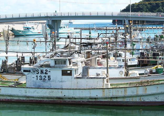 港の風景、天神さん前のイカ釣り船(9)