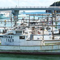 Photos: 港の風景、天神さん前のイカ釣り船(9)