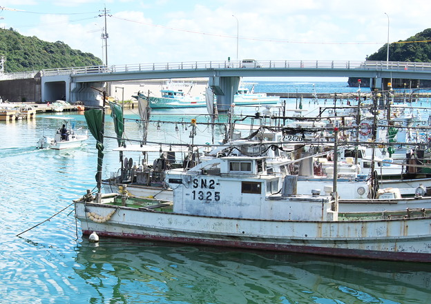 港の風景、天神さん前のイカ釣り船(10)