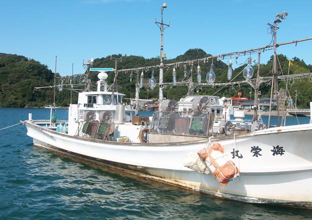 港の風景、中電裏のイカ釣り船