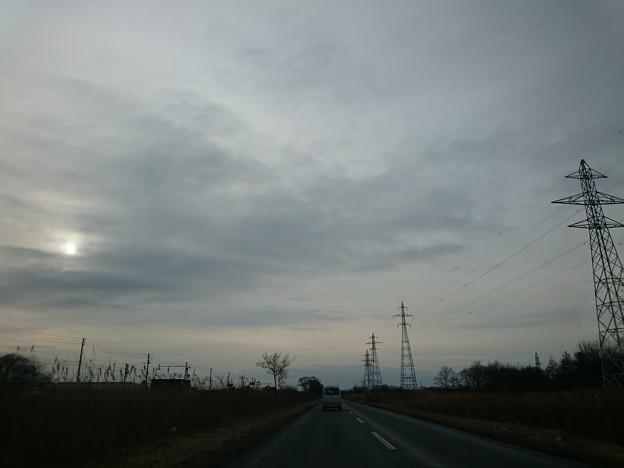 Photos: 3月1日(月)