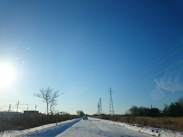 Photos: 3月3日(水)