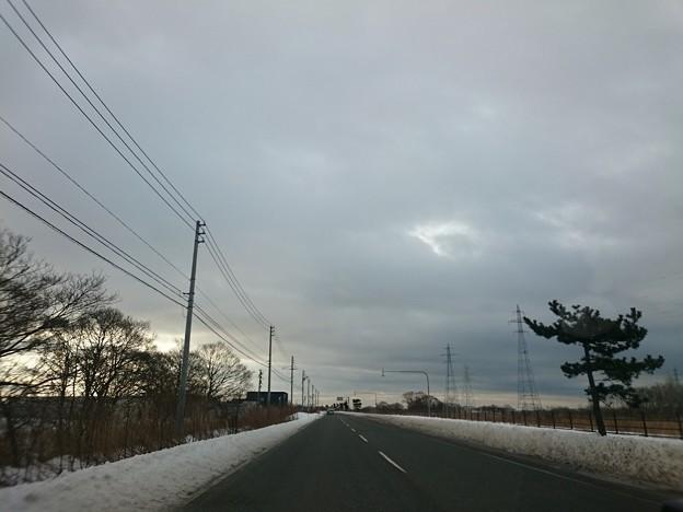 Photos: 3月4日(木)