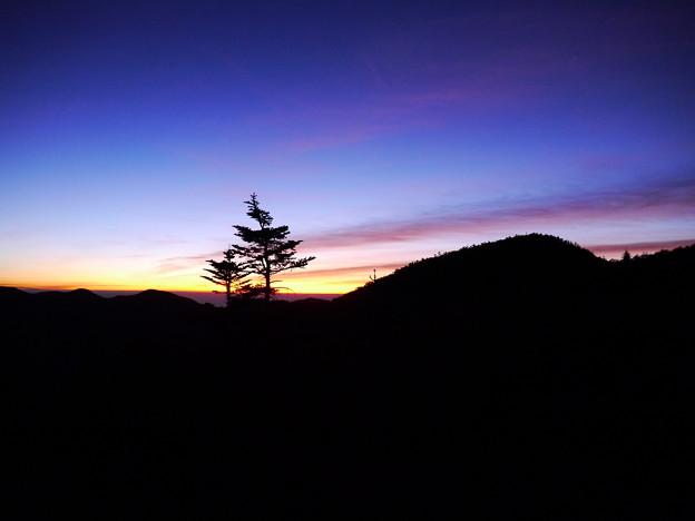 国師ヶ岳山頂(ちょっと手前)