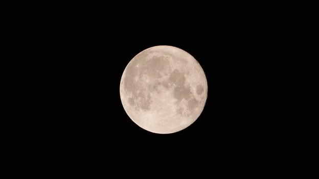 Photos: ぽっかり満月