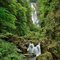 Photos: 真庭市 神庭の滝