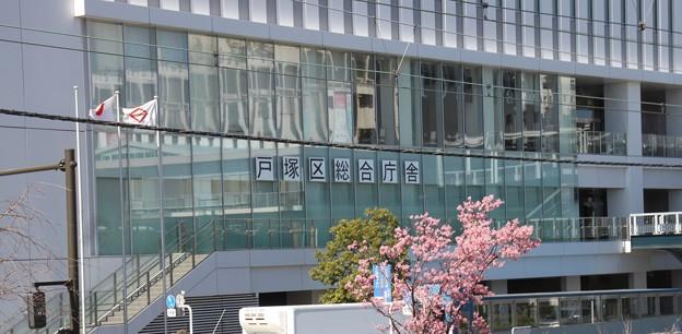Photos: 2021-03-03 014