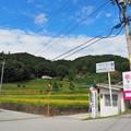 Photos: P9200075