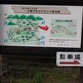 Photos: P9200039