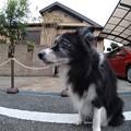 Photos: 210928一万歩二万歩散万歩~そのさん。7