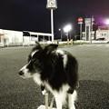 Photos: Instagram(°°)散万歩3
